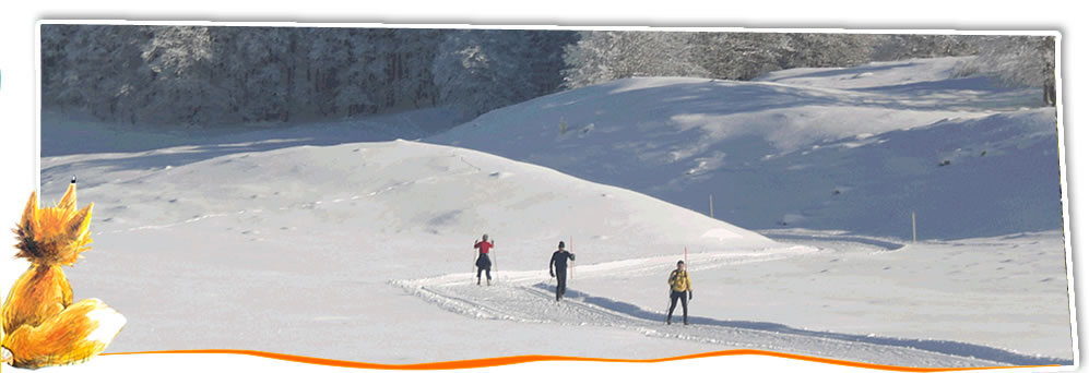 ski de fond plateau du retord
