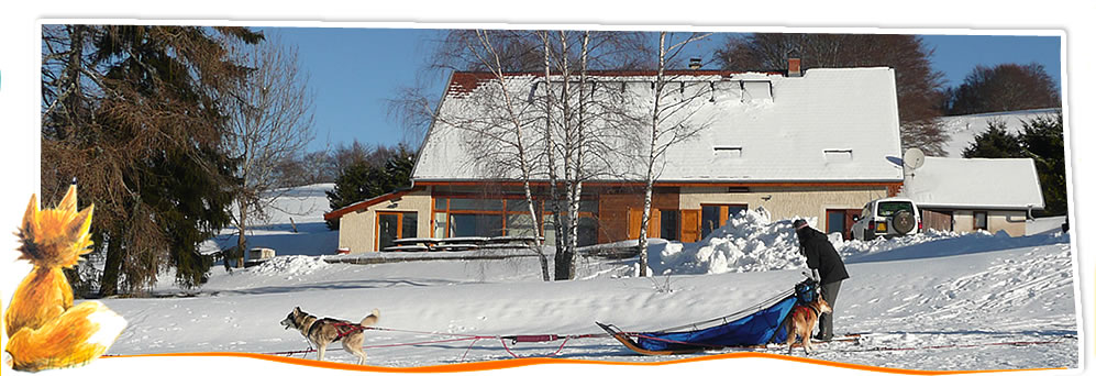 gite ski et chiens de traineaux